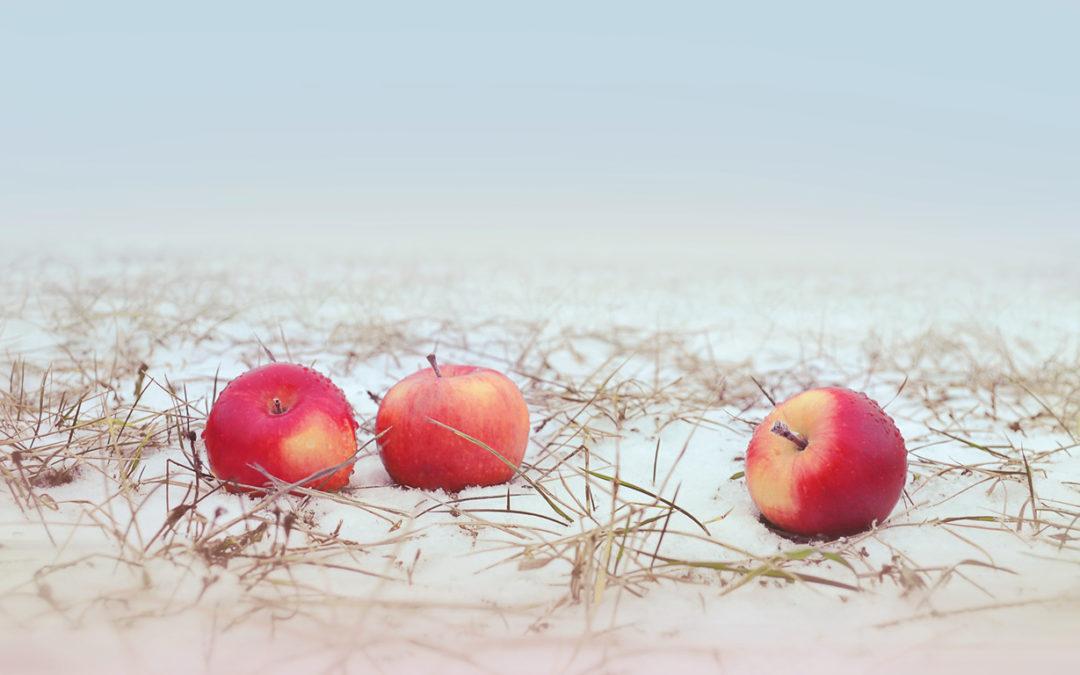 Яблоко раздора.